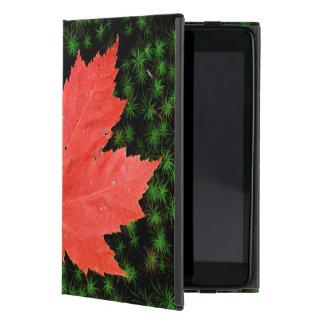 USA, Missouri, Mark Twain National Forest Covers For iPad Mini