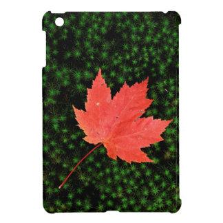 USA, Missouri, Mark Twain National Forest iPad Mini Covers