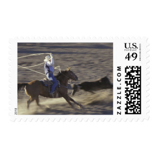 USA, Montana, Big Timber Cowboy rides horse in Postage