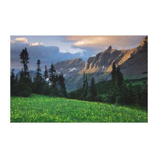 USA, Montana, Glacier National Park, Logan Pass Canvas Print