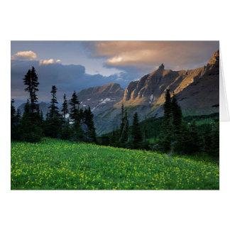 USA, Montana, Glacier National Park, Logan Pass Card