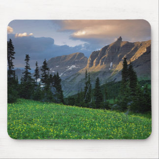 USA, Montana, Glacier National Park, Logan Pass Mouse Pad