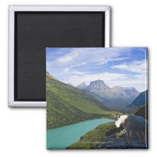 USA, Montana, Glacier National Park, Mountain 2 Inch Square Magnet