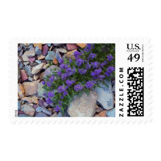USA, Montana, Glacier National Park Stamp
