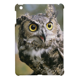 USA, Montana, Kalispell. Great horned owl iPad Mini Cover
