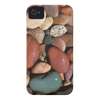 USA, Montana, Lolo National Forest, Clark Fork iPhone 4 Cover