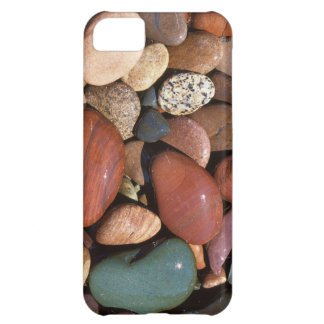 USA, Montana, Lolo National Forest, Clark Fork iPhone 5C Case