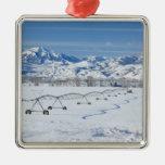 USA, MT, Farm near Livingston Christmas Ornaments