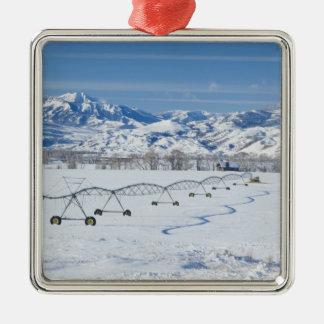 USA, MT, Farm near Livingston Metal Ornament