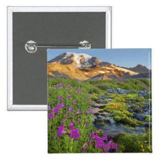 USA, Mt. Rainier National Park, Washington. Buttons