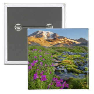USA, Mt. Rainier National Park, Washington. Pinback Button