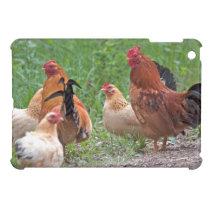 USA, Nebraska. Chickens Cover For The iPad Mini