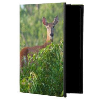 USA, Nebraska, White Tail Doe On Hill iPad Air Case