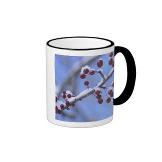 USA, New England, Massachusetts, Reading, 3 Coffee Mug