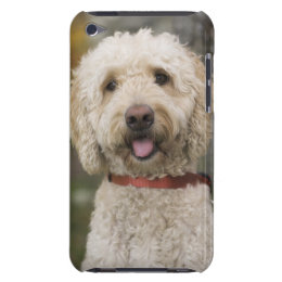 USA, New England, Massachusetts, Reading, iPod Touch Cover