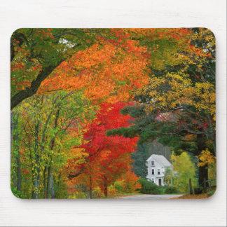 USA, New England, New Hampshire, Andover Mousepads