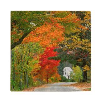 USA, New England, New Hampshire, Andover Wooden Coaster