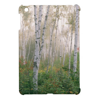 USA, New Hampshire. Birch trees in clearing fog iPad Mini Cases