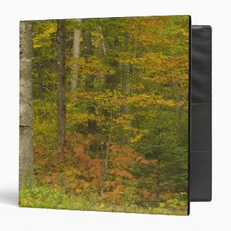 USA, New Hampshire, Livermore, White Mountain Binders