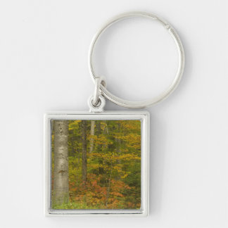 USA, New Hampshire, Livermore, White Mountain Keychain