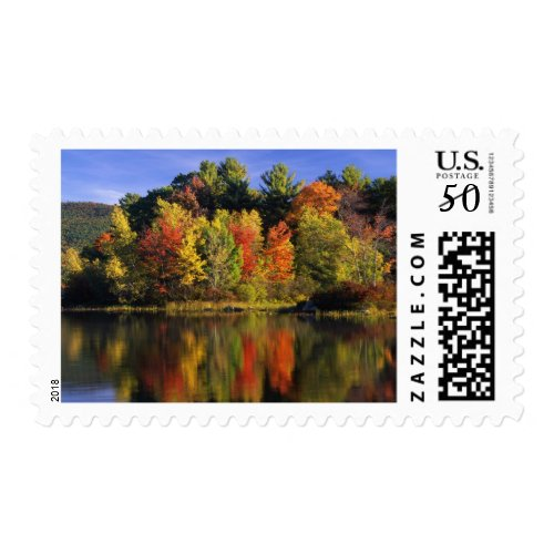 USA, New Hampshire, Moultonborough. Trees in Postage