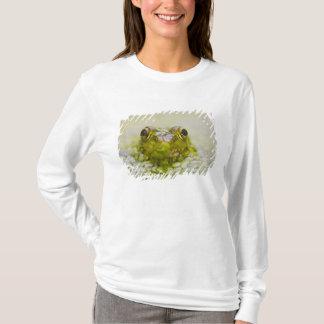 USA, New Jersey, Bernardsville, Sherman Hoffman T-Shirt