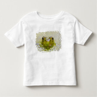 USA, New Jersey, Bernardsville, Sherman Hoffman Toddler T-shirt