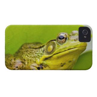 USA, New Jersey, Far Hills, Leonard J. Buck 2 iPhone 4 Cases