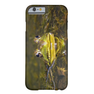 USA, New Jersey, Far Hills, Leonard J. Buck 3 Barely There iPhone 6 Case