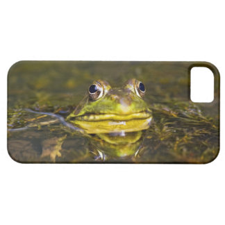USA, New Jersey, Far Hills, Leonard J. Buck 3 iPhone SE/5/5s Case