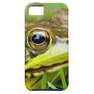 USA, New Jersey, Far Hills, Leonard J. Buck 4 iPhone SE/5/5s Case