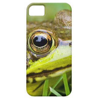 USA, New Jersey, Far Hills, Leonard J. Buck 4 iPhone SE/5/5s Case