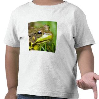 USA, New Jersey, Far Hills, Leonard J. Buck 4 T-shirts