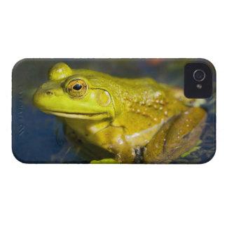 USA, New Jersey, Far Hills, Leonard J. Buck 6 Case-Mate iPhone 4 Cases