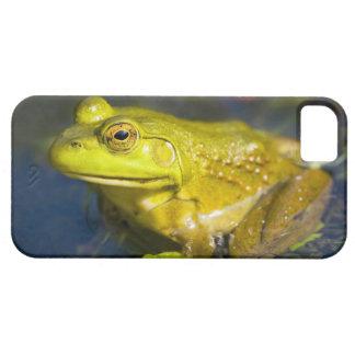 USA, New Jersey, Far Hills, Leonard J. Buck 6 iPhone SE/5/5s Case