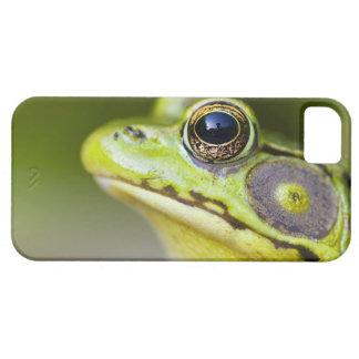 USA, New Jersey, Far Hills, Leonard J. Buck iPhone SE/5/5s Case