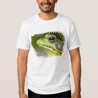 USA, New Jersey, Far Hills, Leonard J. Buck T-Shirt