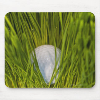 USA, New Jersey, Jersey City, Close-up view of Mouse Pad