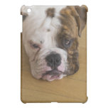 USA, New Jersey, Jersey City, Portrait of bored Case For The iPad Mini