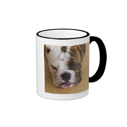 USA, New Jersey, Jersey City, Portrait of bored Coffee Mugs