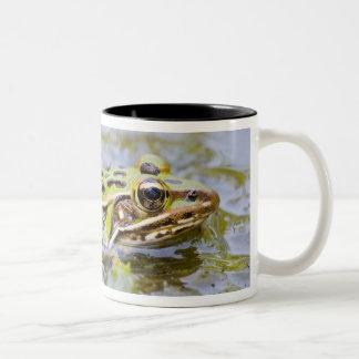 USA, New Jersey, Lakehurst, Lakehurst Naval Air Coffee Mug