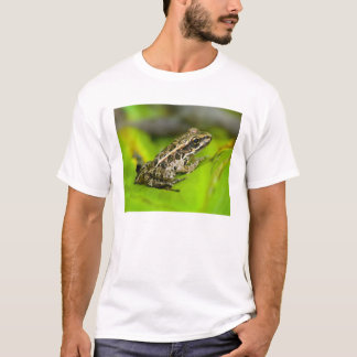 USA, New Jersey, Morristown. Young Pickerel Frog T-Shirt