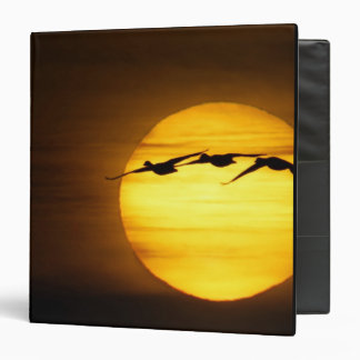 USA, New Mexico, Bosque del Apache National 2 3 Ring Binder