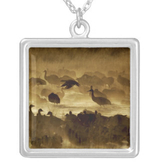 USA, New Mexico, Bosque del Apache National 2 Silver Plated Necklace