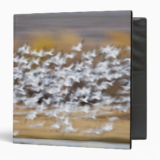 USA, New Mexico, Bosque del Apache National 3 3 Ring Binder