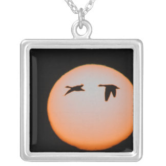 USA, New Mexico, Bosque del Apache National 4 Silver Plated Necklace