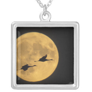 USA, New Mexico, Bosque del Apache National Silver Plated Necklace