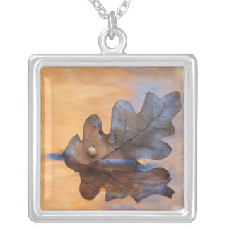 USA, New Mexico. Oak leaf in stream Silver Plated Necklace