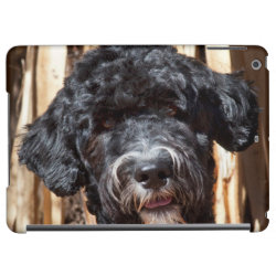 Case Savvy Glossy Finish iPad Air Case with Portuguese Water Dog Phone Cases design