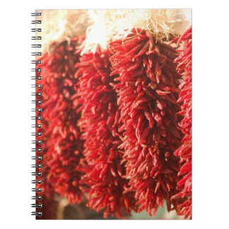 USA, New Mexico, Santa Fe: Downtown Santa Fe, 3 Spiral Notebook